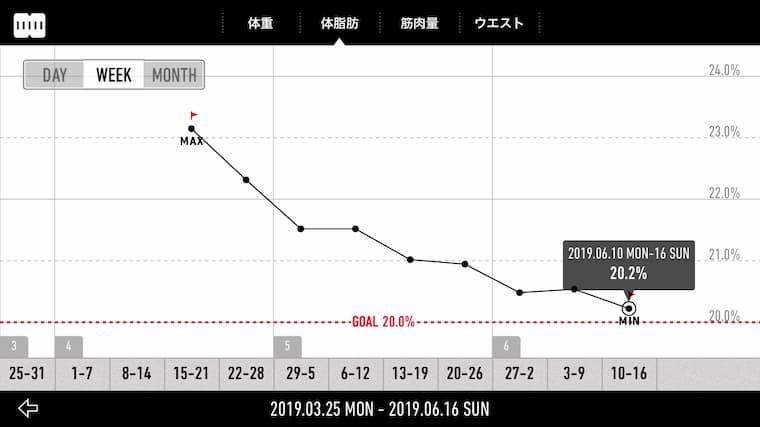 男のダイエット体脂肪の変化