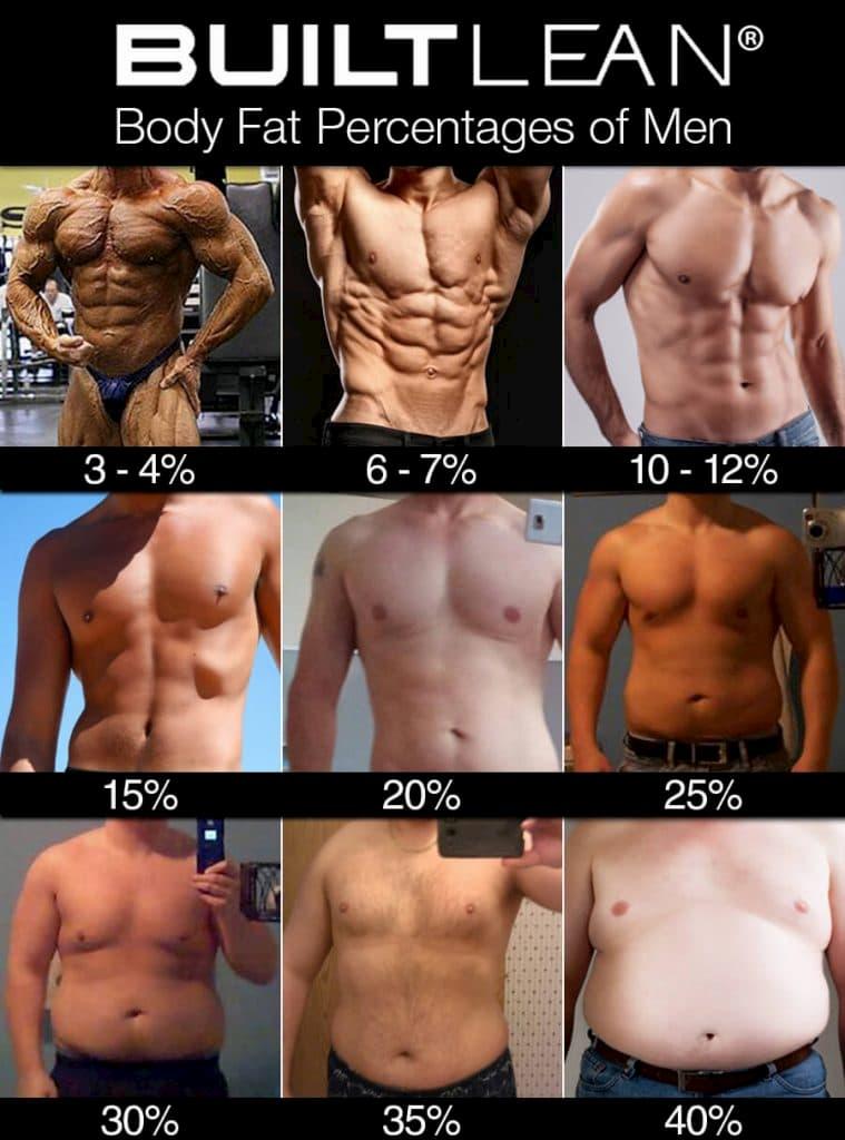 男の体脂肪率
