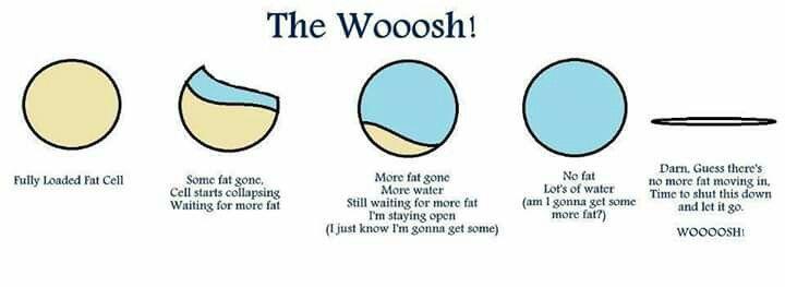 The Whoosh現象
