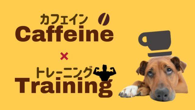 筋トレとカフェイン